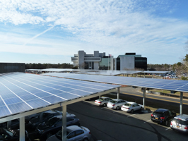 Commercial Solar Energy from GreenLeaf Solar