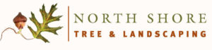 North Shore Tree Landscaping - GreenLeaf Solar Partner