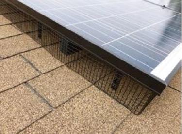 Protecting Your Solar System Greenleaf Solar